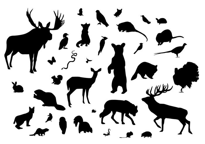 Forest Animal Silhouettes.