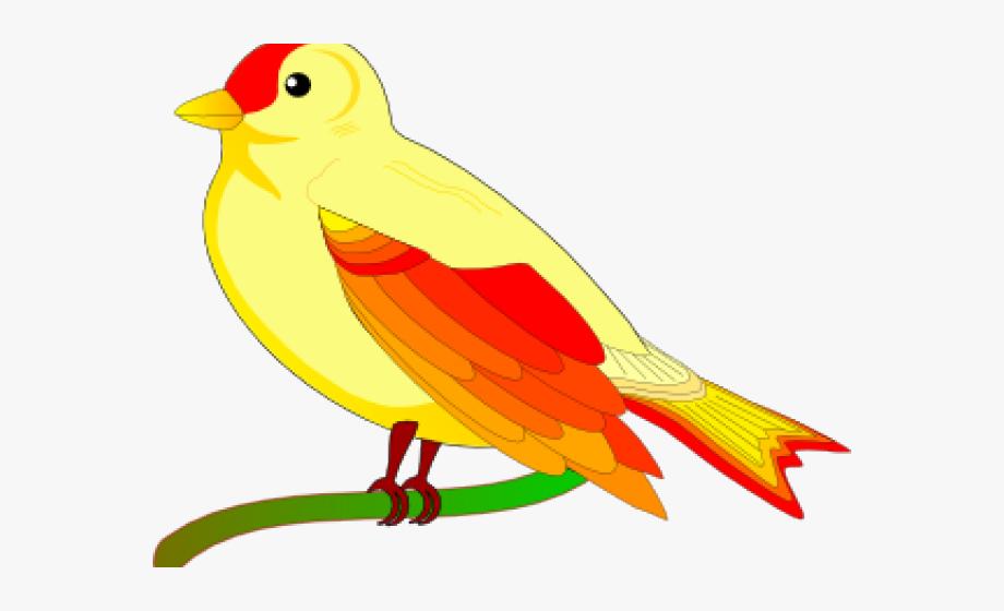 Vector Clipart Bird.