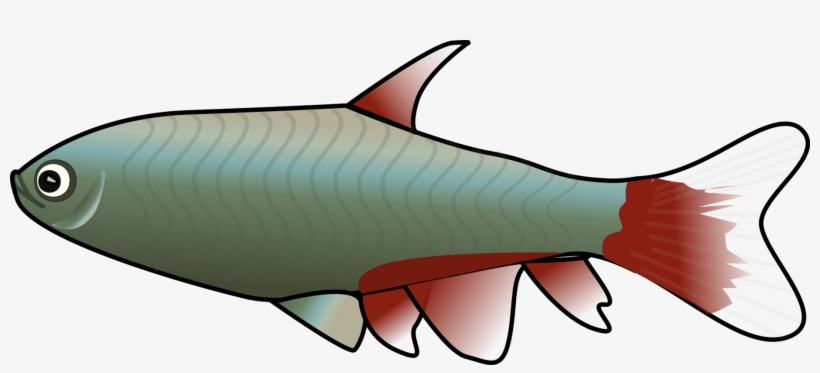 Animated Fish Clipart.
