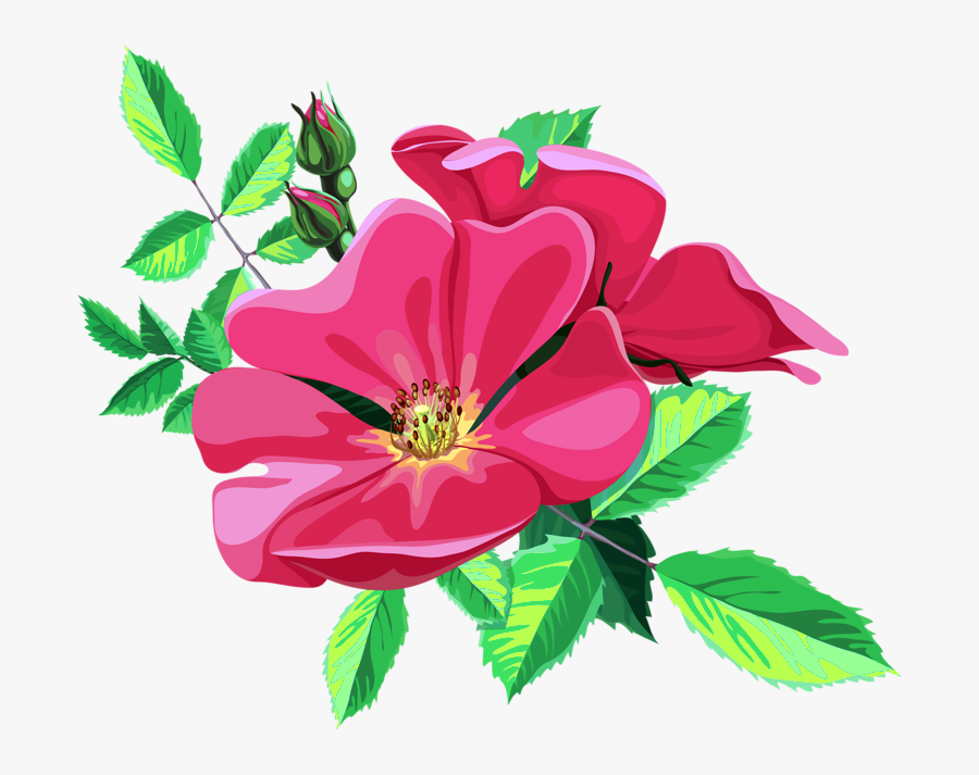 Transparent Animated Flower Png , Free Transparent Clipart.