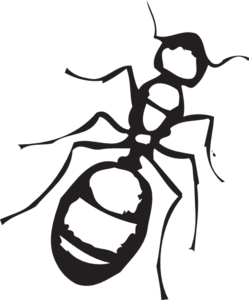 Sketch Of An Ant Clip Art at Clker.com.