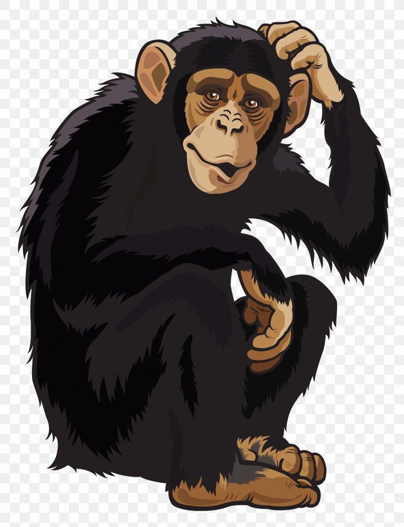 Chimpanzee Ape Monkey Clip Art, PNG, 2044x2665px, Chimpanzee.
