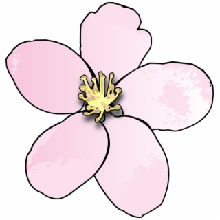 Free Apple Blossom PNG Images & Cliparts.