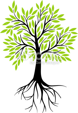 Tree and Roots Illustration.