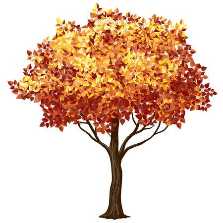 Autumn Trees Clipart Free Download Clip Art.