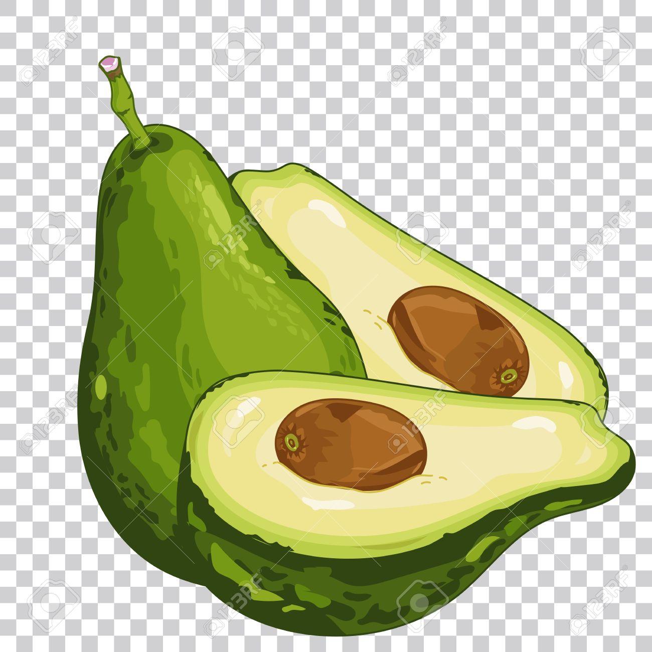 Avocado isolated, Avocado on transparent background. Avocado...