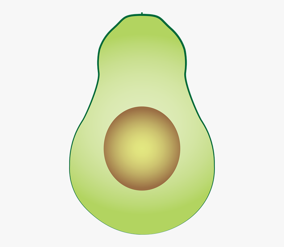 Avocado Clipart Fresh.