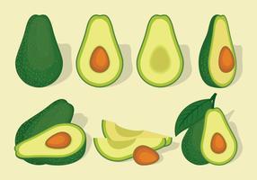 Avocado Free Vector Art.