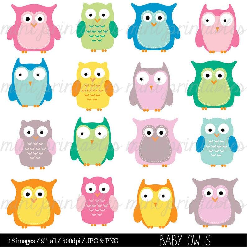 Owl Clipart, Baby owl, animal clipart, baby shower clipart clip art,  animals clipart.