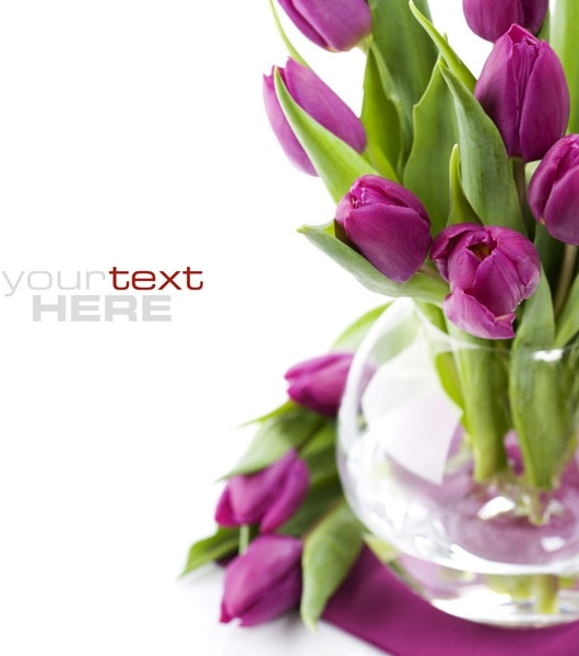 free background images flowers #12