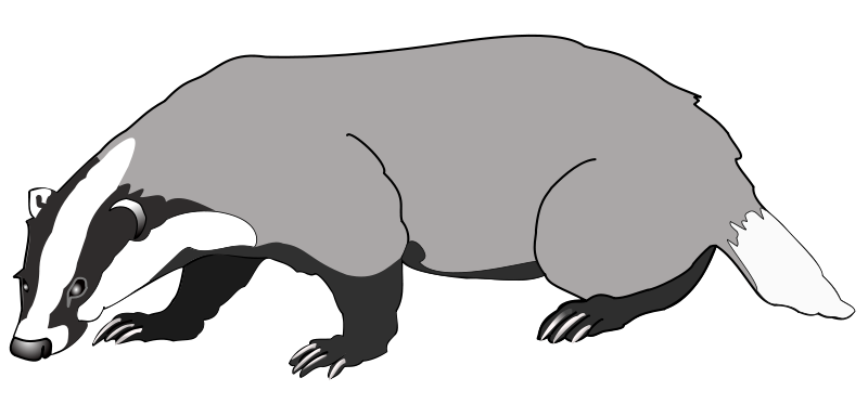Free Clipart: Badger.