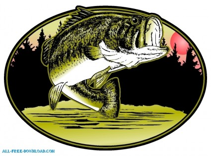Free Bass Fish Cliparts, Download Free Clip Art, Free Clip.