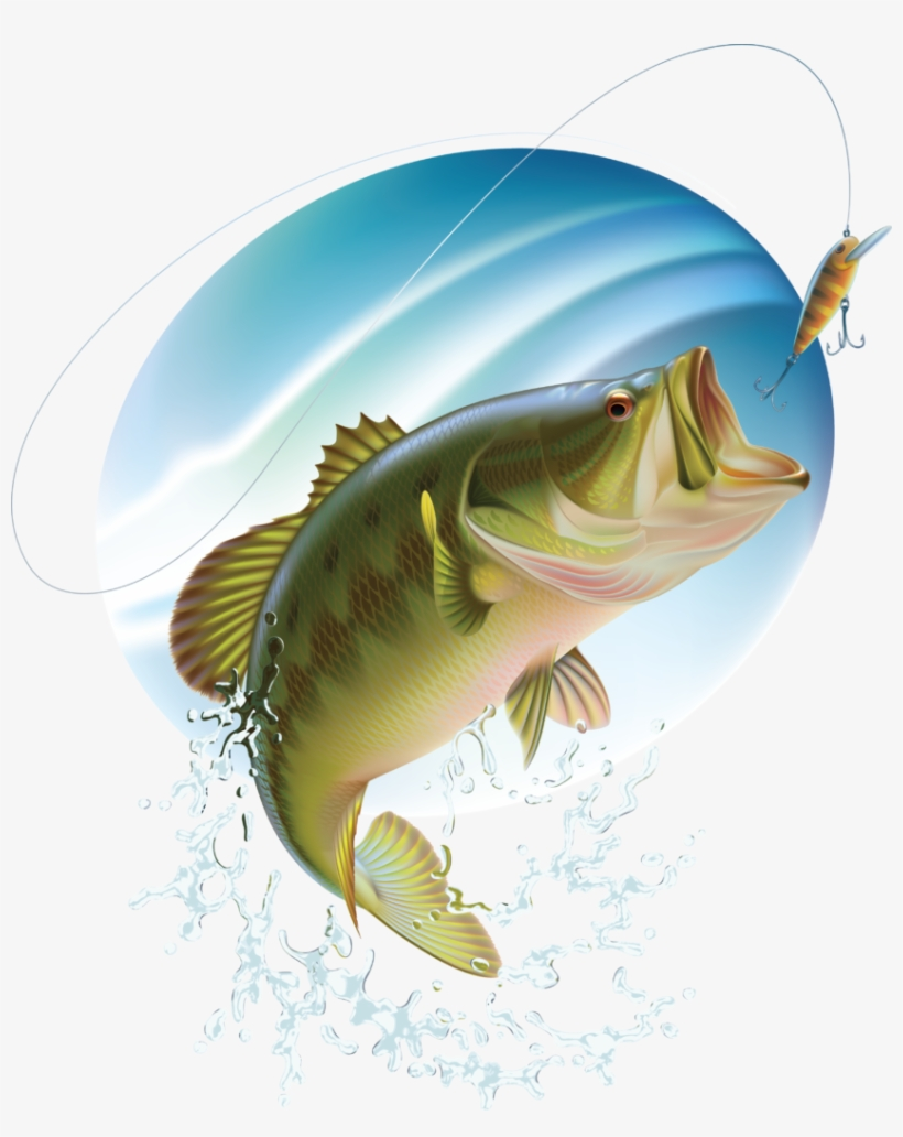 Bass Fishing Clipart Free.