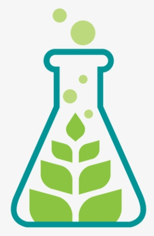 Biology PNG, Transparent Biology PNG Image Free Download.
