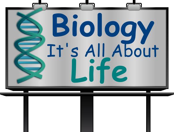 Biology Clip Art at Clker.com.
