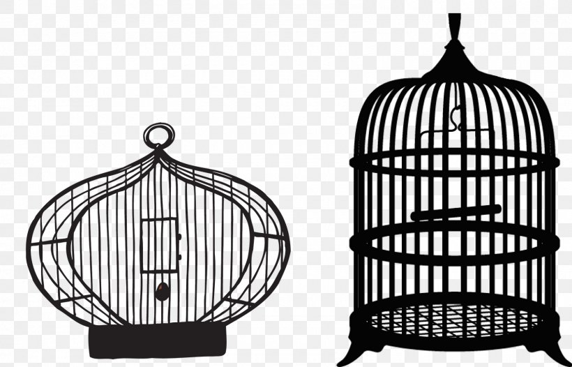 Birdcage Parrot Domestic Canary Clip Art, PNG, 1600x1027px.