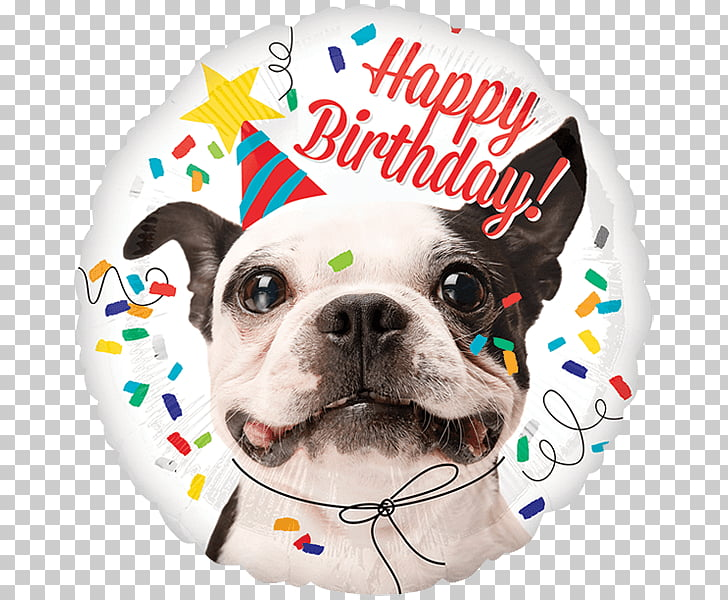 Mylar balloon Balloon Dog Birthday, balloon PNG clipart.