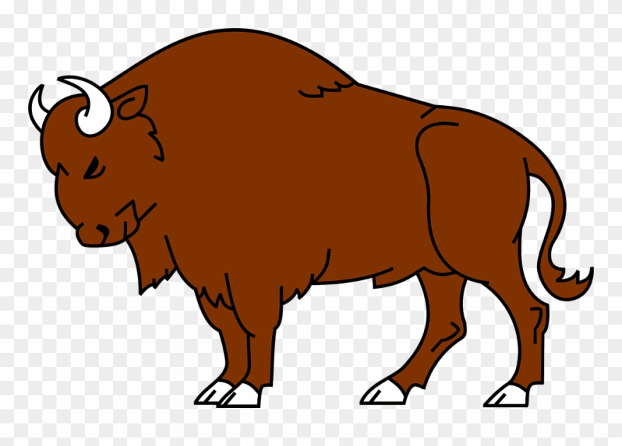 Clip Art Royalty Free Library Bison Clipart Simple.