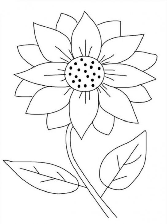free black and white clip art sunflowers 20 free Cliparts ...