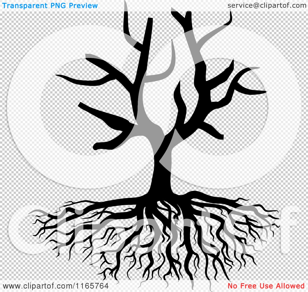 Clipart of a Black and White Bare Tree and Roots.