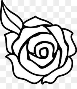 Black And White Rose PNG and Black And White Rose.
