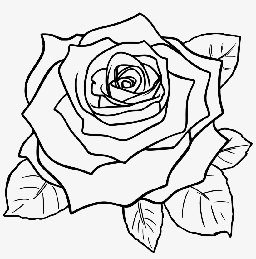 White Rose Clipart Line Art.
