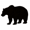 Best Stock Vector Bear Silhouettes On White Background Image.