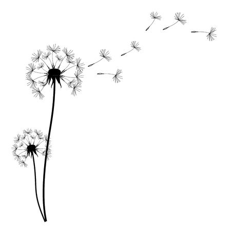 1,946 Blowing Dandelion Stock Vector Illustration And Royalty Free.
