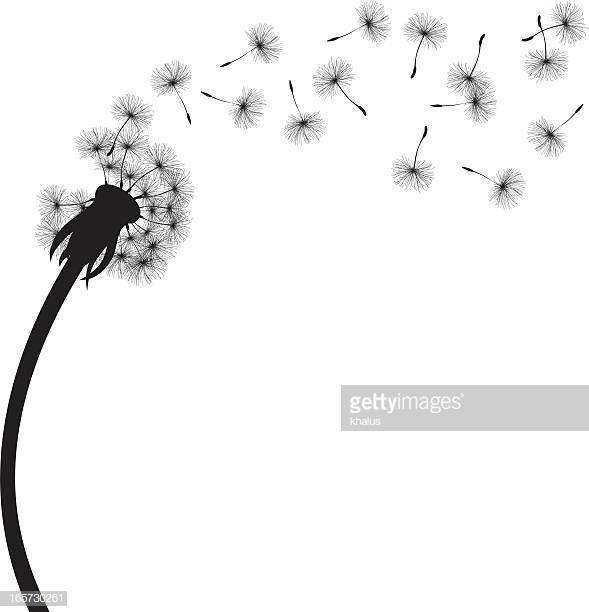 60 Top Dandelion Stock Illustrations, Clip art, Cartoons and Icons.