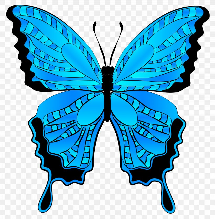 Butterfly Morpho Menelaus Clip Art, PNG, 6117x6224px.