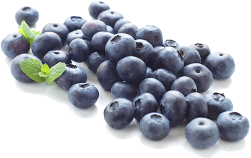 694 Blueberry free clipart.
