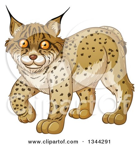 red bobcat clipart animal clipground Bobcat Clip Art Black and White free bobcat clipart images