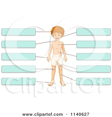 Cartoon Of A Girl With Labeled Body Parts 2.