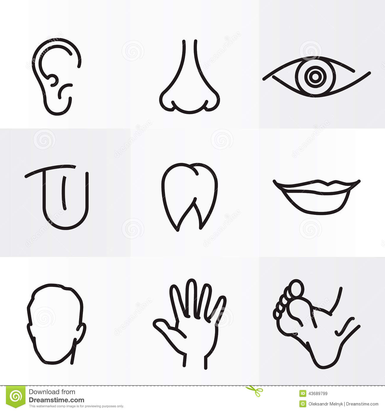 Body Parts Clipart Black And White.