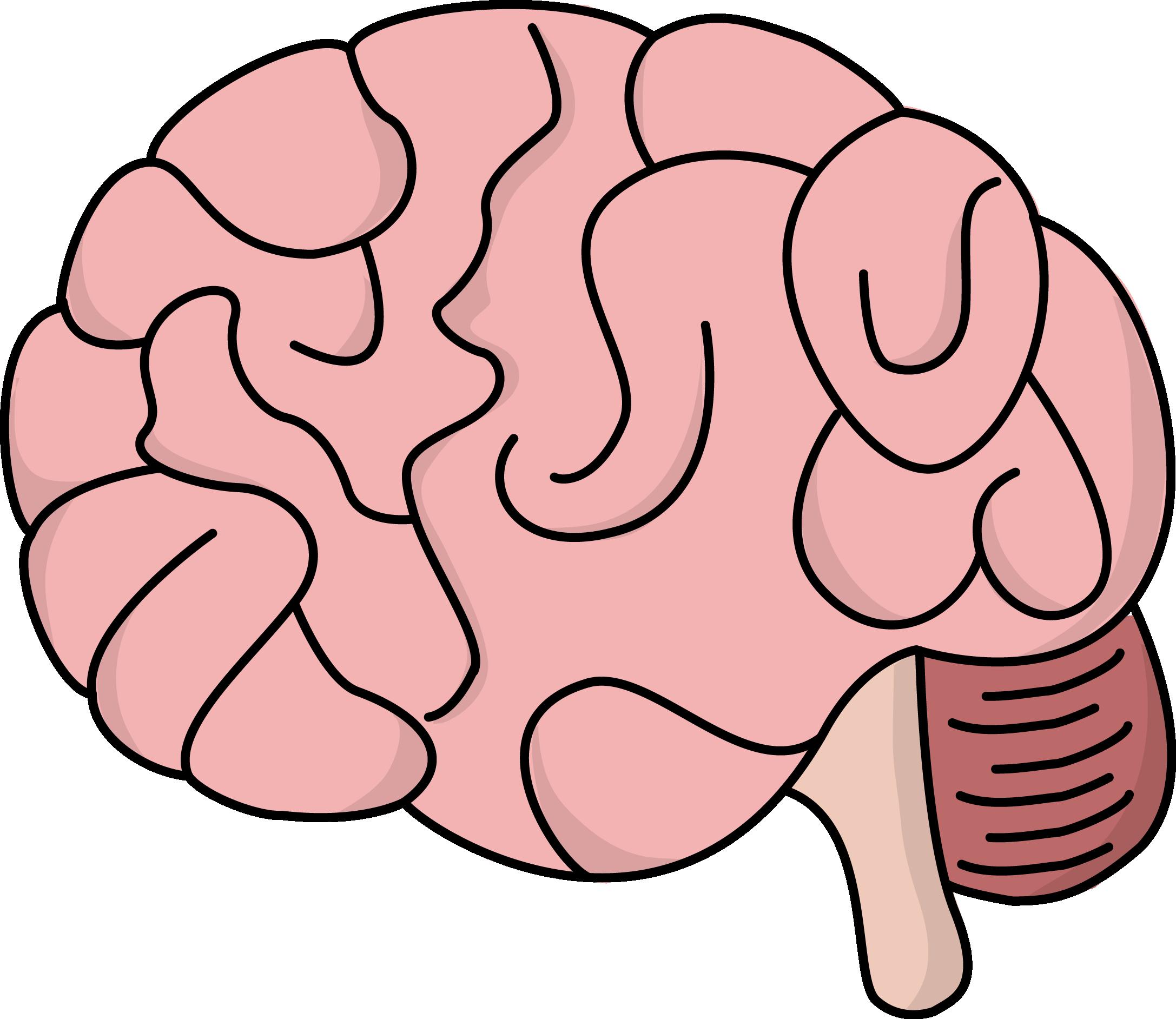 Image for free brain health high resolution clip art.