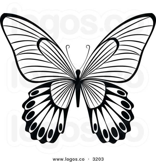 free butterfly clipart black round Clipground