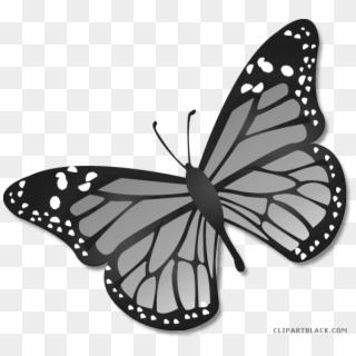 Free Butterflies Clipart Png Transparent Images.