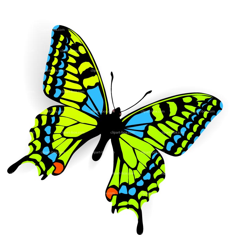 Free Butterfly Images Free, Download Free Clip Art, Free.