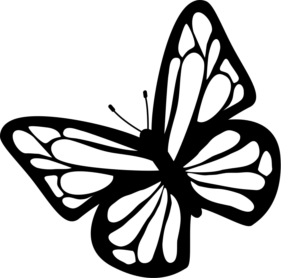 Butterfly black and white clipart download free images in.