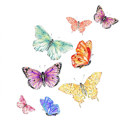 free butterfly watercolor clipart clipground memorial clip art with poppies memorial clip art picnic