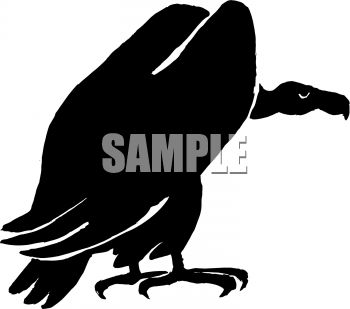 Royalty Free Clipart Image: Vulture or buzzard silhouette.
