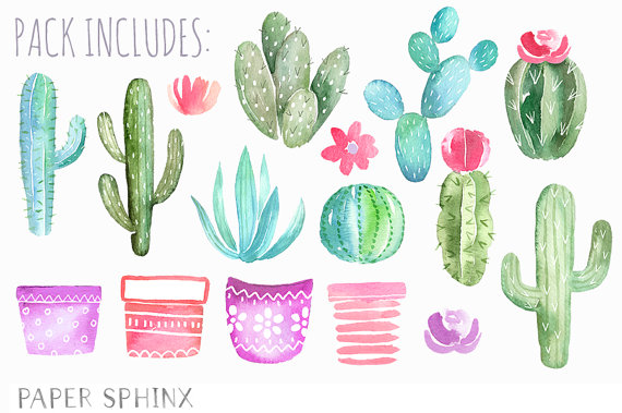 Free watercolor cactus clipart 2 » Clipart Station.