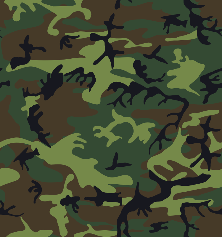 Free Clipart: Camouflage / Army Print.