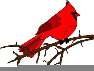 Free Clipart Cardinals.