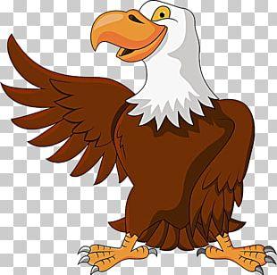 Cartoon Eagle PNG Images, Cartoon Eagle Clipart Free Download.