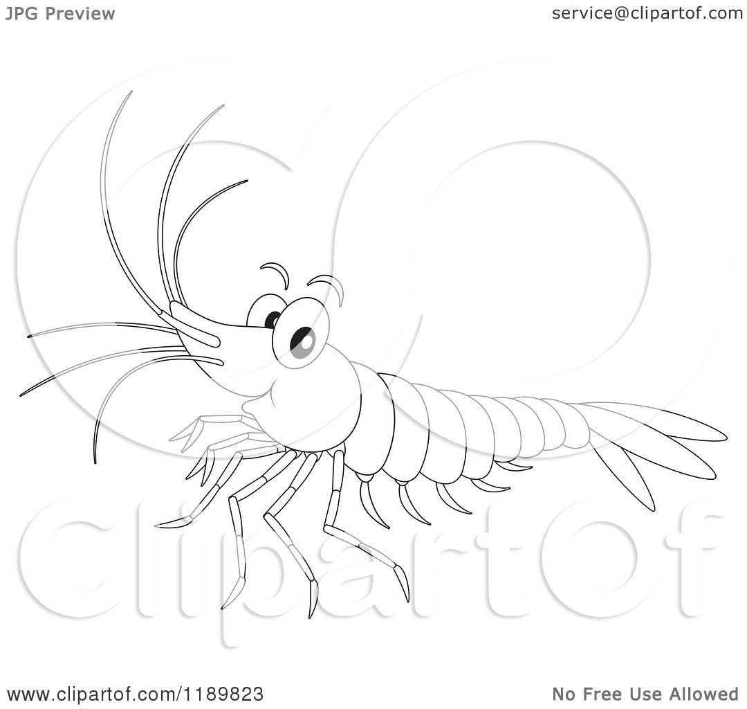 Cartoon of a Cute Happy Outlined Shrimp.