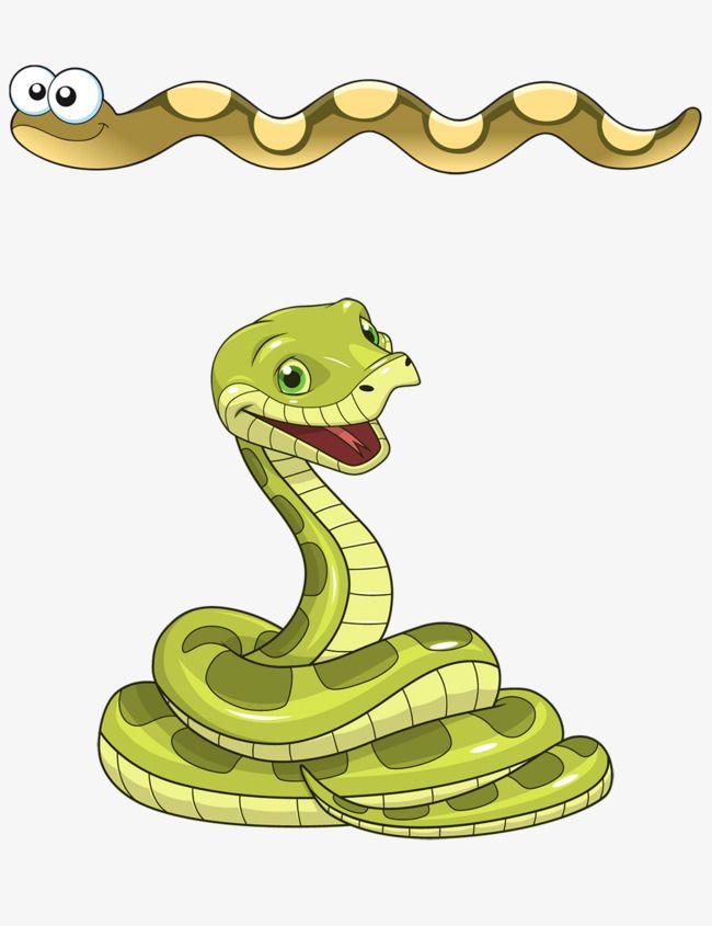 Cartoon Snake, Snake Clipart, Cobra, Ancistrodon Acutus PNG.