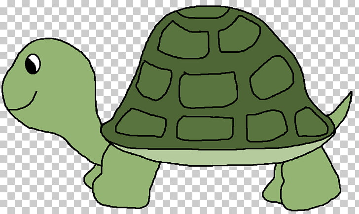 Sea turtle , Green Turtle s PNG clipart.