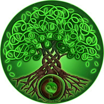 Free Celtic Tree Of Life Clipart Clipground