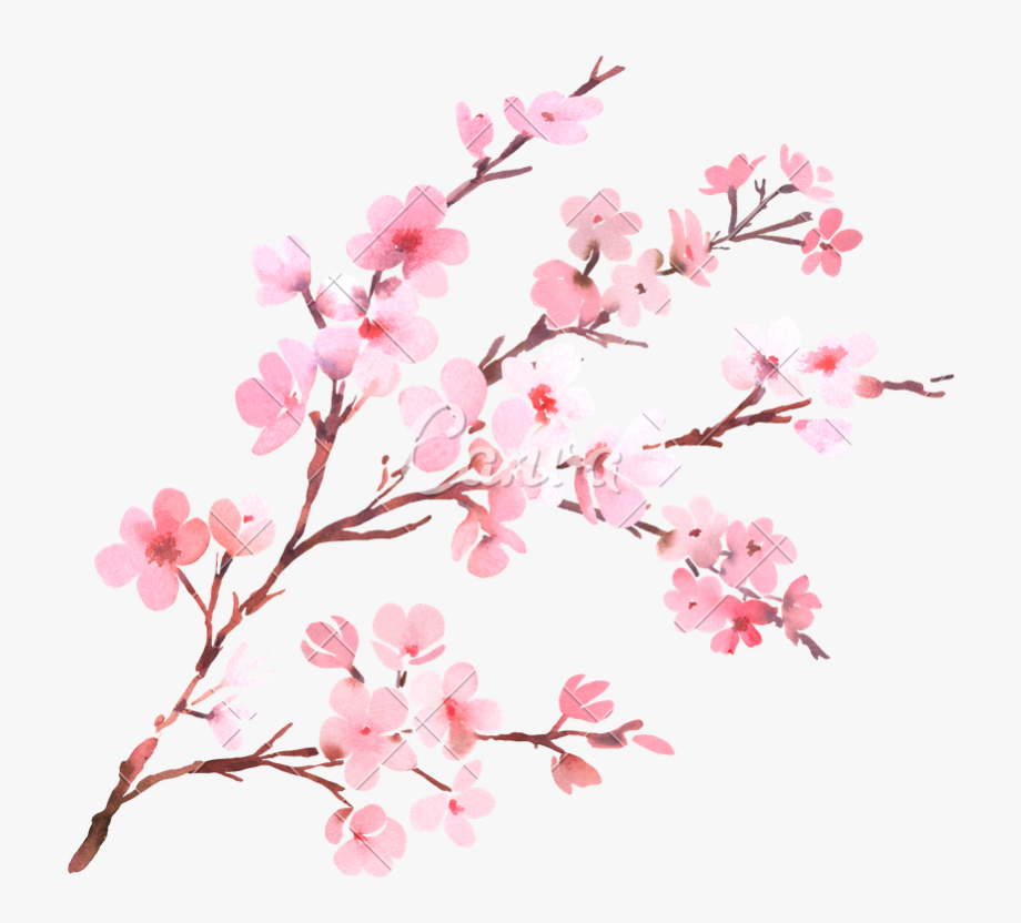 Watercolor With Spring Tree Branch In Blossom.
